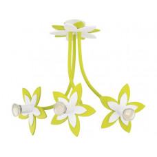 Lustra Flowers Green 6898 Nowodvorski