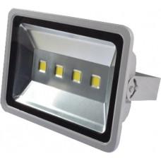 Proiector 200W LED CDL SK